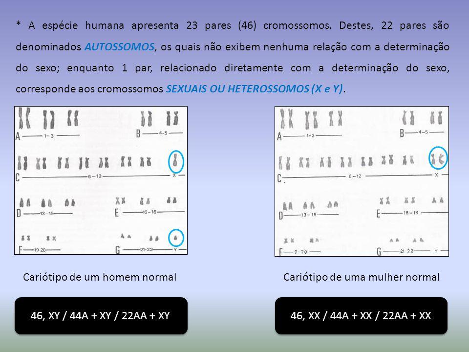 * A espécie humana apresenta 23 pares (46) cromossomos.