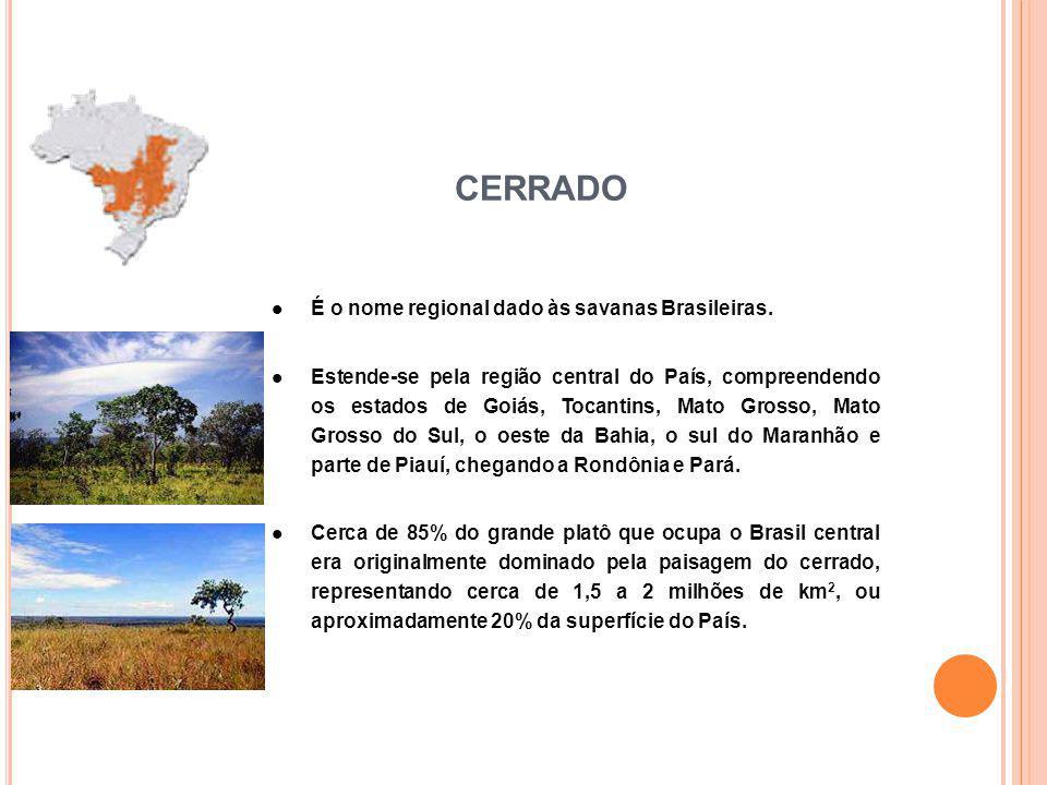 É o nome regional dado às savanas Brasileiras. Estende-se pela região central do País, compreendendo os estados de Goiás, Tocantins, Mato Grosso, Mato
