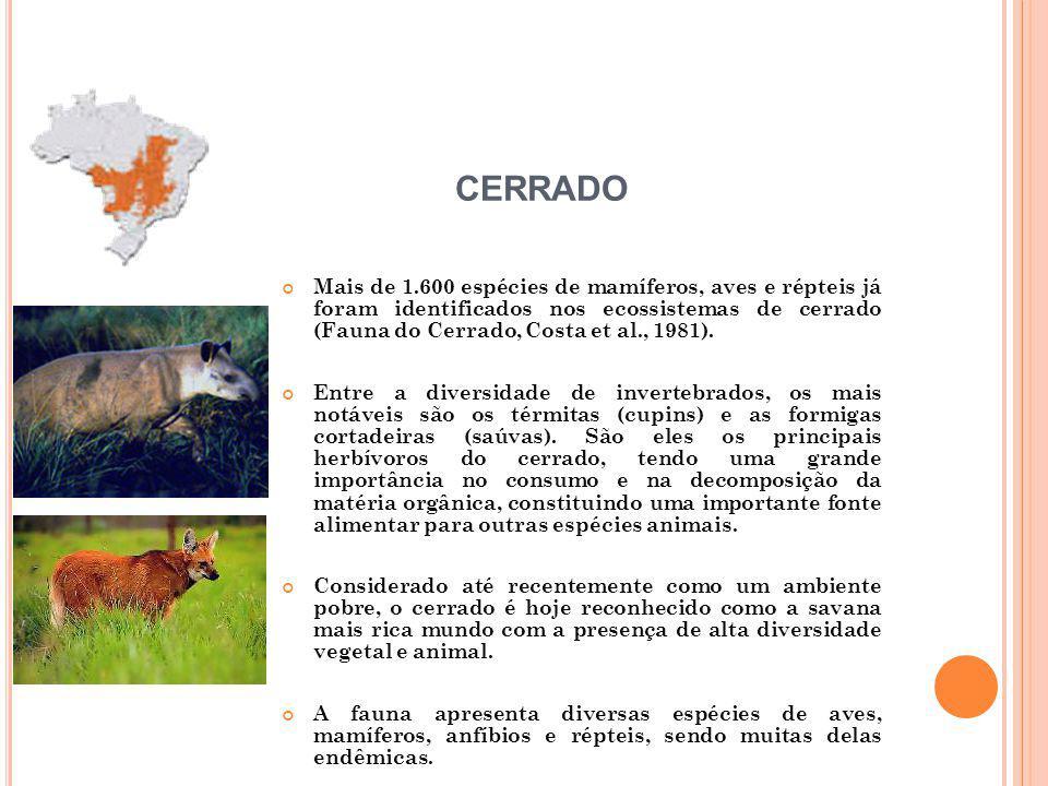 Mais de 1.600 espécies de mamíferos, aves e répteis já foram identificados nos ecossistemas de cerrado (Fauna do Cerrado, Costa et al., 1981).