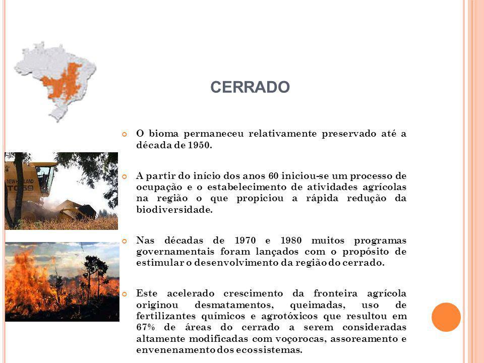 O bioma permaneceu relativamente preservado até a década de 1950.