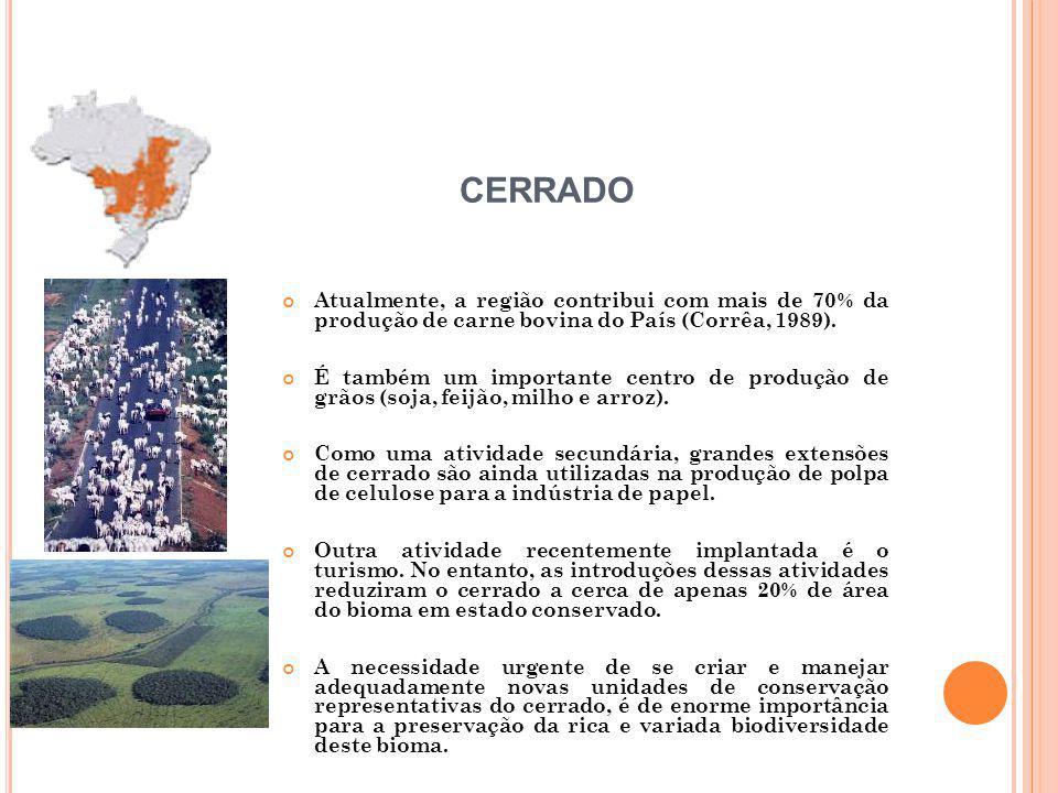 Atualmente, a região contribui com mais de 70% da produção de carne bovina do País (Corrêa, 1989). É também um importante centro de produção de grãos