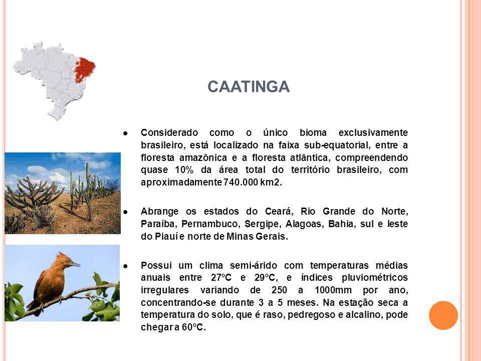 Considerado como o único bioma exclusivamente brasileiro, está localizado na faixa sub-equatorial, entre a floresta amazônica e a floresta atlântica, compreendendo quase 10% da área total do território brasileiro, com aproximadamente 740.000 km2.