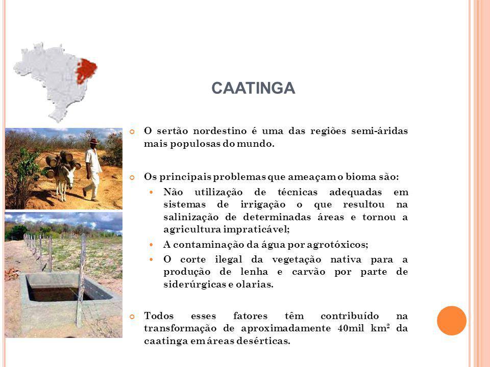 O sertão nordestino é uma das regiões semi-áridas mais populosas do mundo. Os principais problemas que ameaçam o bioma são: Não utilização de técnicas