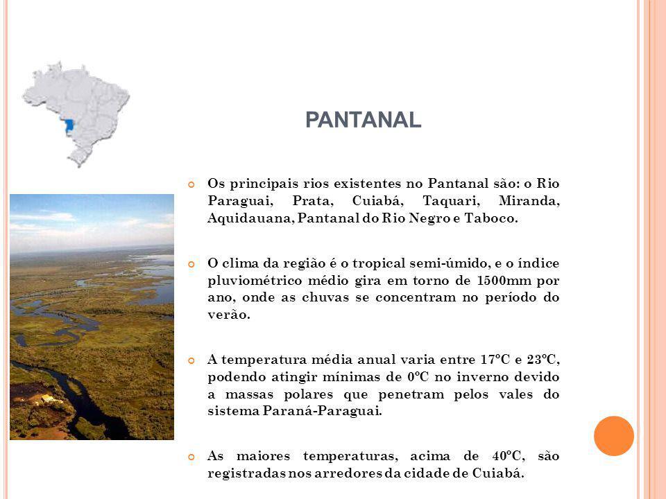 Os principais rios existentes no Pantanal são: o Rio Paraguai, Prata, Cuiabá, Taquari, Miranda, Aquidauana, Pantanal do Rio Negro e Taboco.