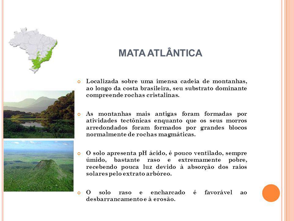 Localizada sobre uma imensa cadeia de montanhas, ao longo da costa brasileira, seu substrato dominante compreende rochas cristalinas. As montanhas mai