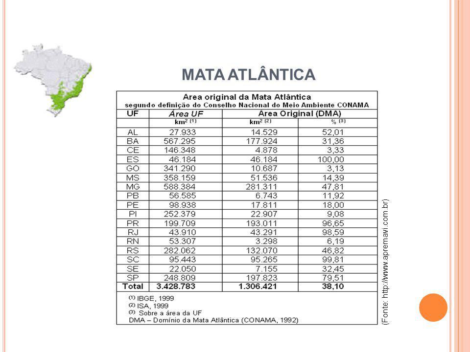 (Fonte: http://www.apremavi.com.br) MATA ATLÂNTICA