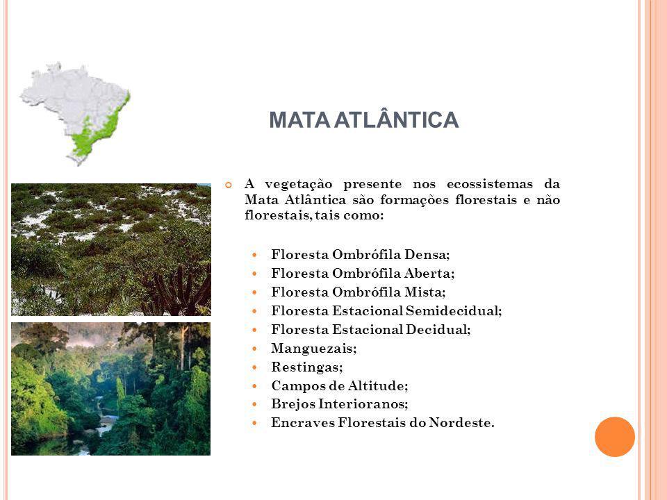 A vegetação presente nos ecossistemas da Mata Atlântica são formações florestais e não florestais, tais como: Floresta Ombrófila Densa; Floresta Ombrófila Aberta; Floresta Ombrófila Mista; Floresta Estacional Semidecidual; Floresta Estacional Decidual; Manguezais; Restingas; Campos de Altitude; Brejos Interioranos; Encraves Florestais do Nordeste.