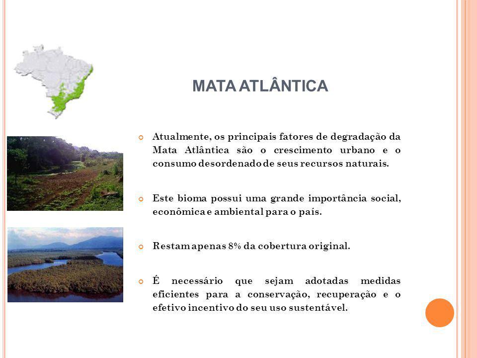 Atualmente, os principais fatores de degradação da Mata Atlântica são o crescimento urbano e o consumo desordenado de seus recursos naturais. Este bio