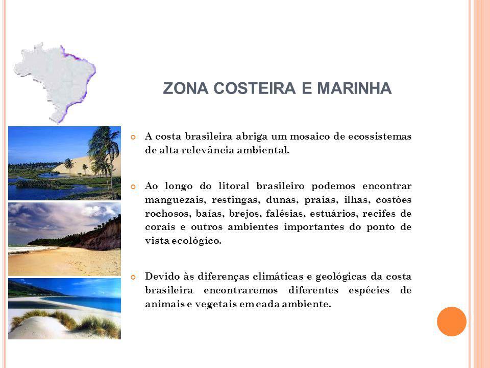 A costa brasileira abriga um mosaico de ecossistemas de alta relevância ambiental. Ao longo do litoral brasileiro podemos encontrar manguezais, restin
