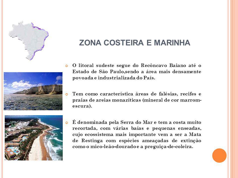 O litoral sudeste segue do Recôncavo Baiano até o Estado de São Paulo,sendo a área mais densamente povoada e industrializada do País.