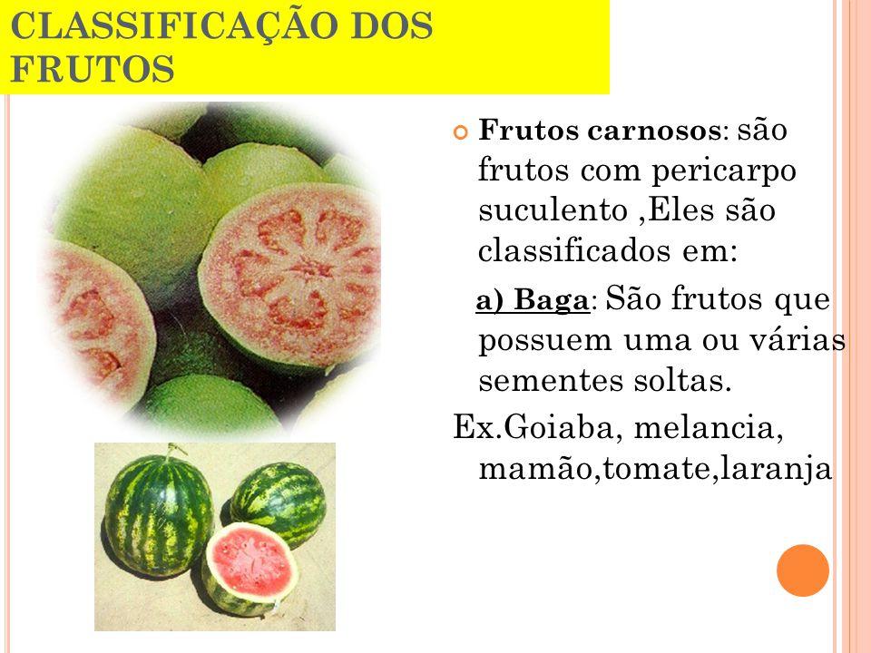 CLASSIFICAÇÃO DOS FRUTOS Frutos carnosos : são frutos com pericarpo suculento,Eles são classificados em: a) Baga : São frutos que possuem uma ou vária