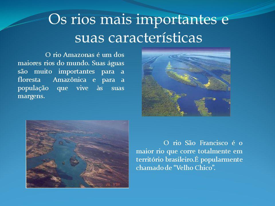 Os rios mais importantes e suas características O rio Amazonas é um dos maiores rios do mundo.