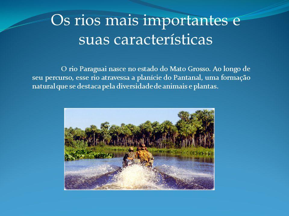 Os rios mais importantes e suas características O rio Paraguai nasce no estado do Mato Grosso.