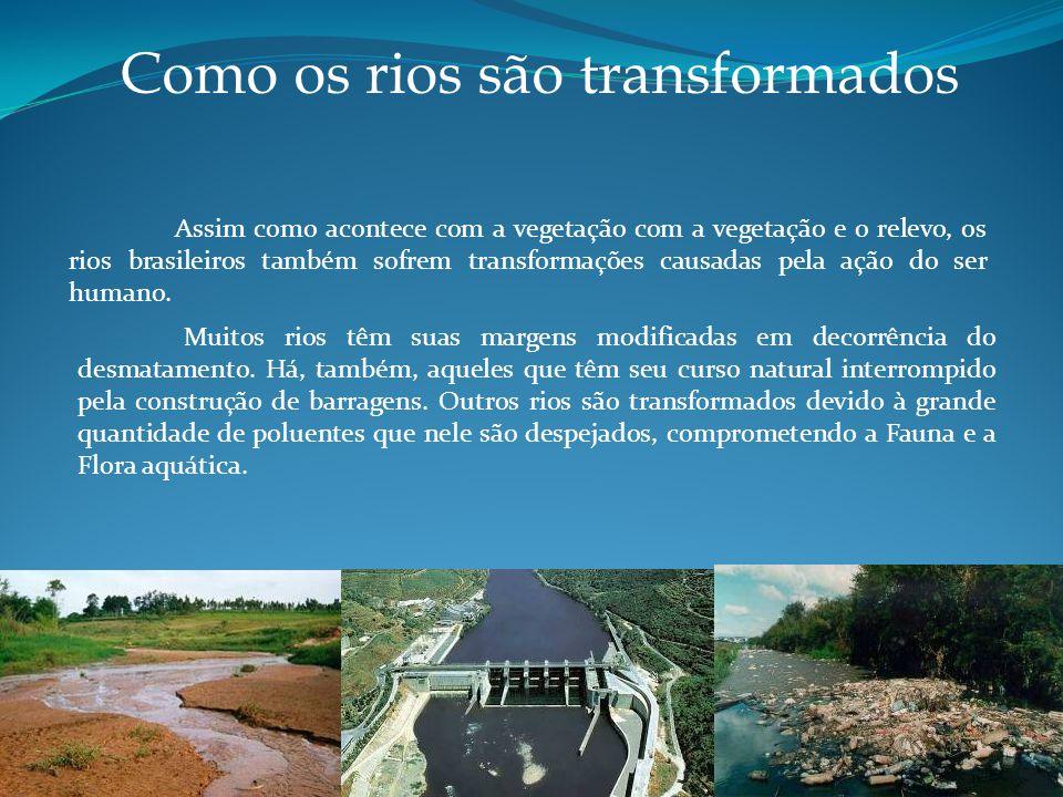 Como os rios são transformados Assim como acontece com a vegetação com a vegetação e o relevo, os rios brasileiros também sofrem transformações causadas pela ação do ser humano.