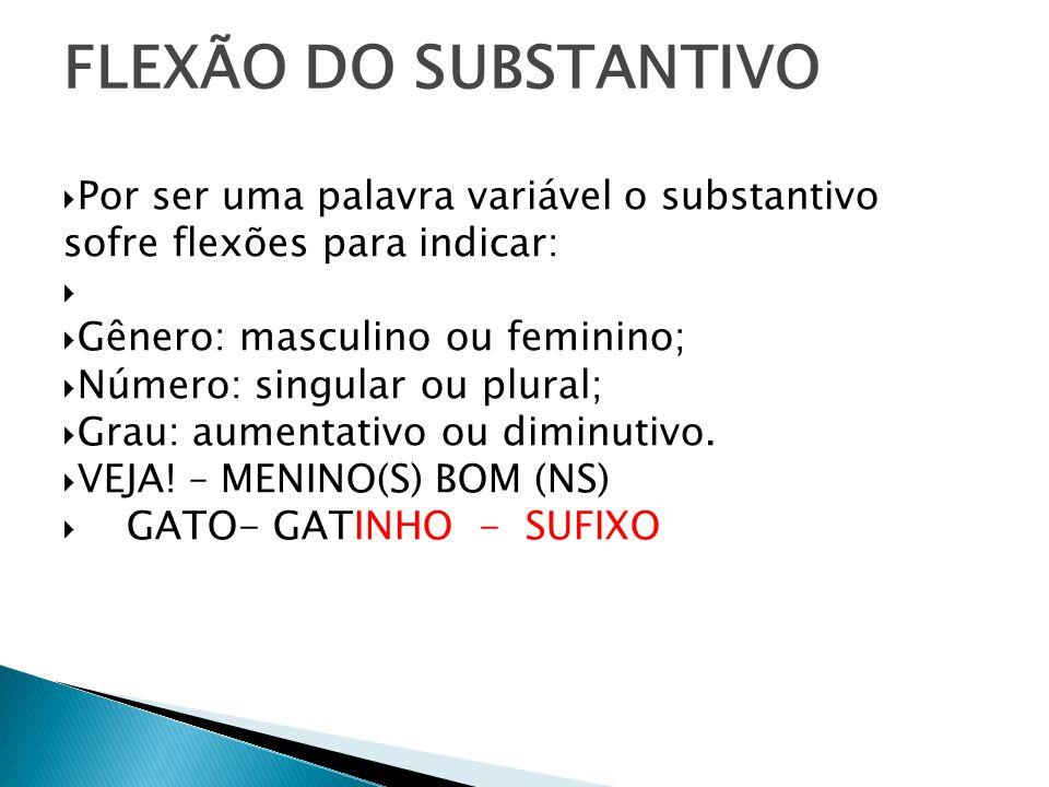 Na língua portuguesa há dois gêneros: masculino e feminino.