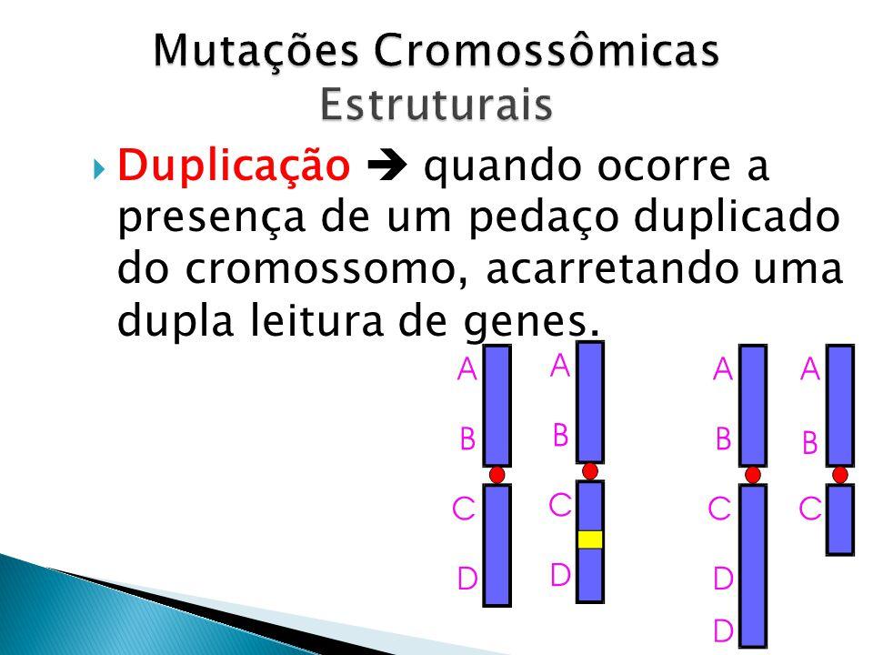 Duplicação quando ocorre a presença de um pedaço duplicado do cromossomo, acarretando uma dupla leitura de genes.