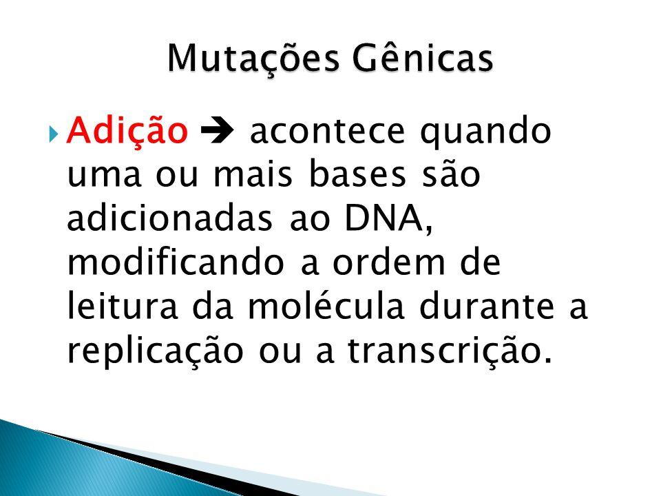 Adição acontece quando uma ou mais bases são adicionadas ao DNA, modificando a ordem de leitura da molécula durante a replicação ou a transcrição.