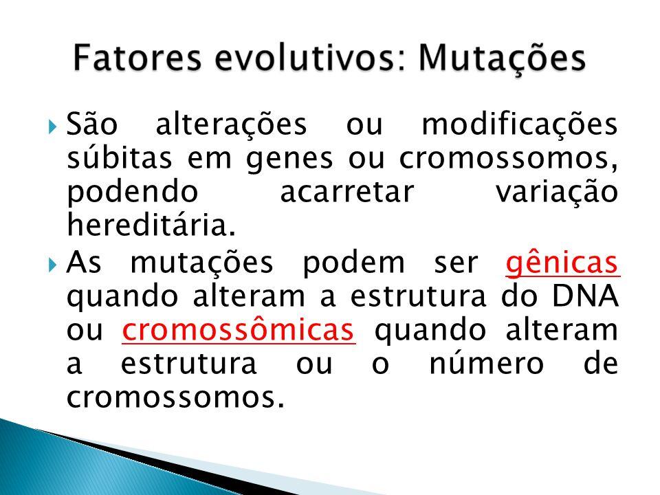 São alterações ou modificações súbitas em genes ou cromossomos, podendo acarretar variação hereditária.