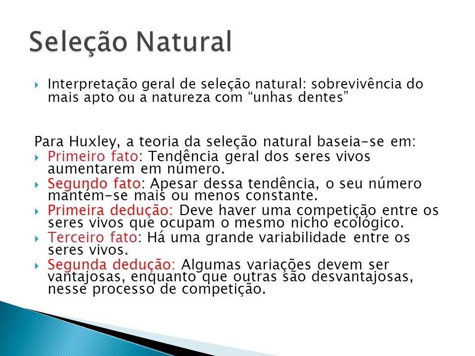 Interpretação geral de seleção natural: sobrevivência do mais apto ou a natureza com unhas dentes Para Huxley, a teoria da seleção natural baseia-se em: Primeiro fato: Tendência geral dos seres vivos aumentarem em número.