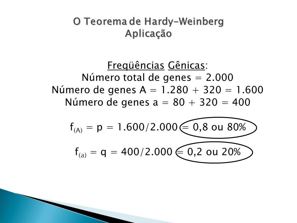 O Teorema de Hardy-Weinberg Aplicação Freqüências Gênicas: Número total de genes = 2.000 Número de genes A = 1.280 + 320 = 1.600 Número de genes a = 80 + 320 = 400 f (A) = p = 1.600/2.000 = 0,8 ou 80% f (a) = q = 400/2.000 = 0,2 ou 20%