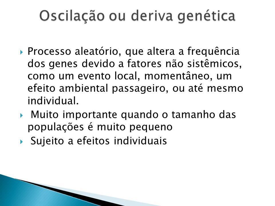 Processo aleatório, que altera a frequência dos genes devido a fatores não sistêmicos, como um evento local, momentâneo, um efeito ambiental passageiro, ou até mesmo individual.