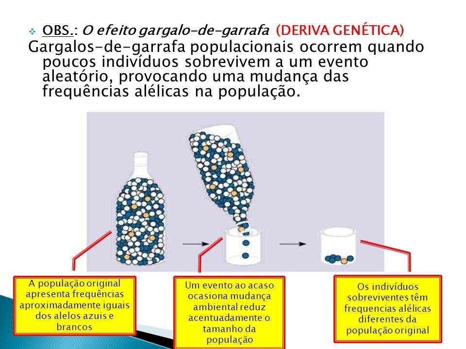 OBS.: O efeito gargalo-de-garrafa (DERIVA GENÉTICA) Gargalos-de-garrafa populacionais ocorrem quando poucos indivíduos sobrevivem a um evento aleatório, provocando uma mudança das frequências alélicas na população.