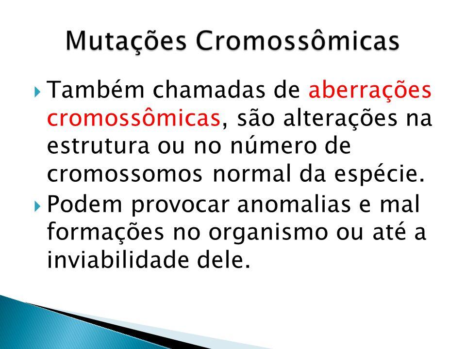 Também chamadas de aberrações cromossômicas, são alterações na estrutura ou no número de cromossomos normal da espécie.