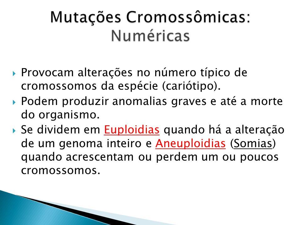 Monoploidias (n) quando há apenas um genoma.Triploidias (3n) quando há três genomas.