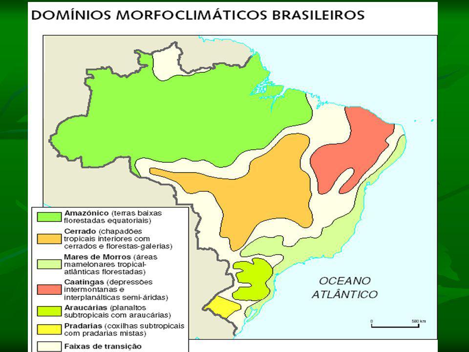 Massa Tropical Atlântica (mTa): A massa Tropical Atlântica é basicamente uma massa quente e úmida. Ao se defrontar com as escarpas dos planaltos que e