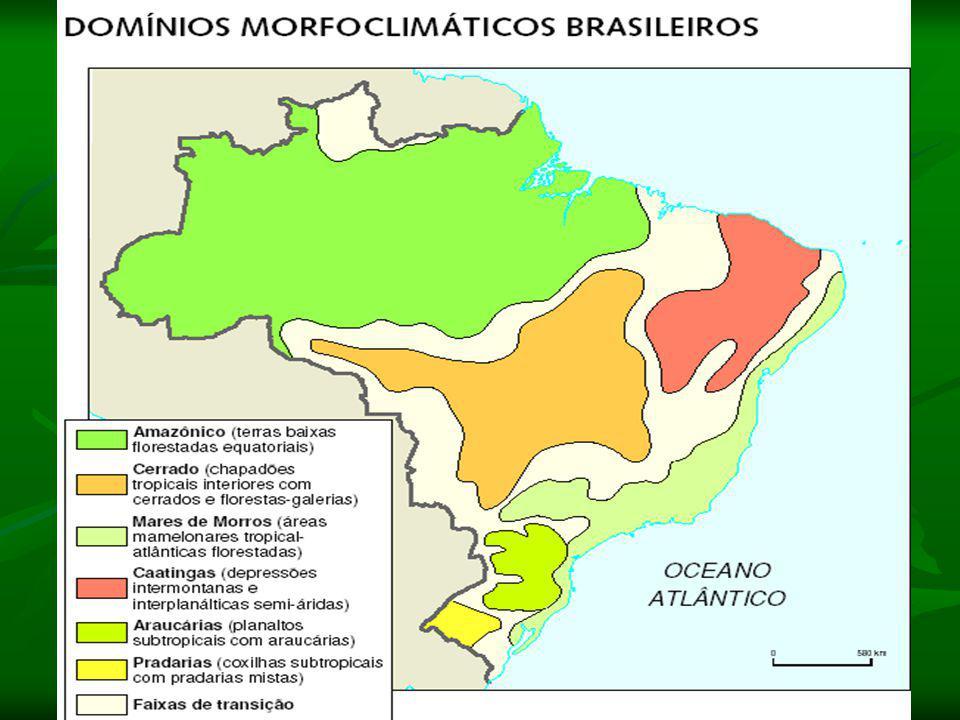 Domínio do Cerrado: Clima: Tropical (duas estações bem definidas) Relevo: Observam-se extensos planaltos (Planalto Central), depressões e chapadas sed