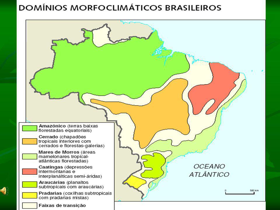 Domínio dos Mares de Morros: Clima: Tropical úmido Relevo: é sem dúvida o seu traço mais característico (Planaltos e Serras do Atlântico-Leste-Sudeste