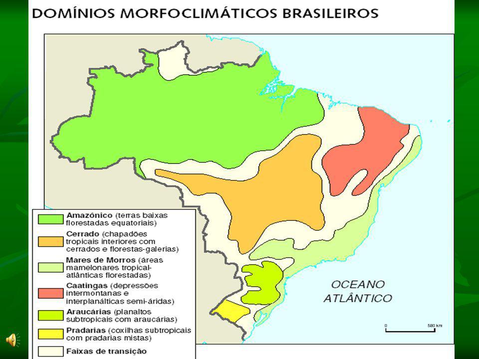Domínio da Caatinga: Clima: Tropical Semi-Árido (chuvas irregulares) Relevo: formado basicamente por planaltos (planaltos da Bacia do Parnaíba e da Bo