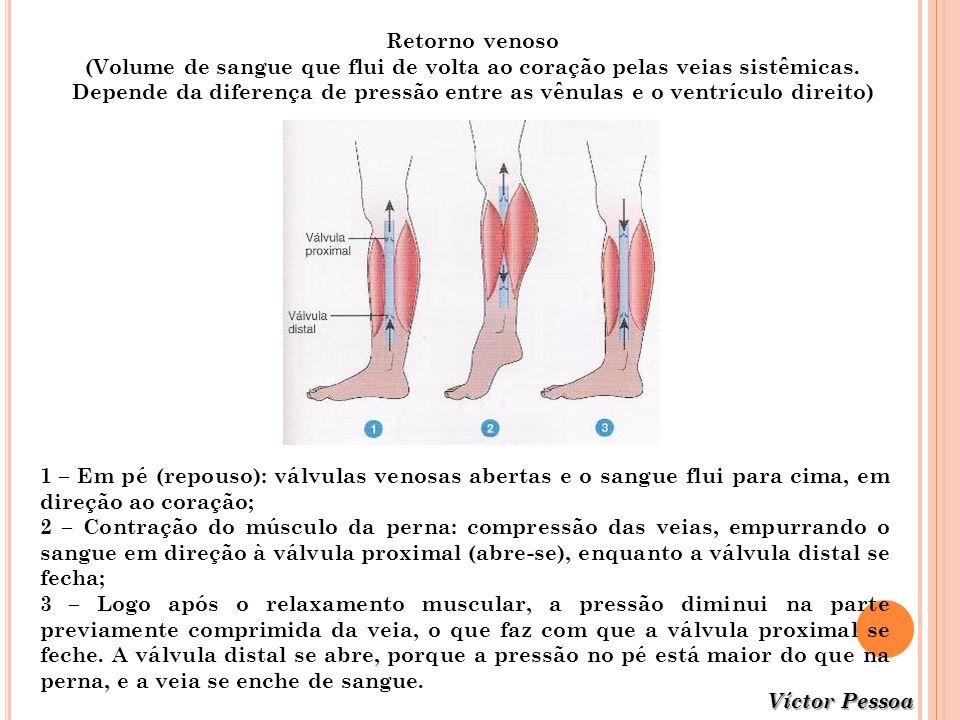 Víctor Pessoa Retorno venoso (Volume de sangue que flui de volta ao coração pelas veias sistêmicas. Depende da diferença de pressão entre as vênulas e