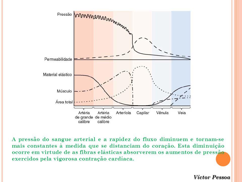 Víctor Pessoa A pressão do sangue arterial e a rapidez do fluxo diminuem e tornam-se mais constantes à medida que se distanciam do coração. Esta dimin