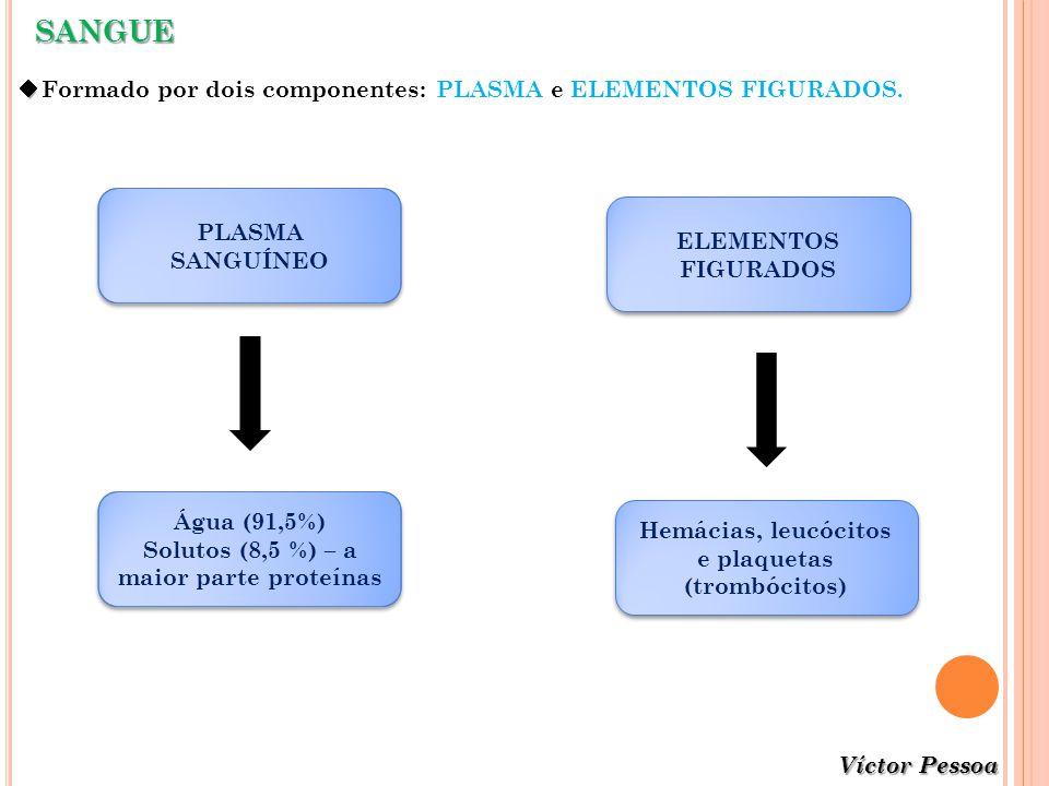 SANGUE Formado por dois componentes: PLASMA e ELEMENTOS FIGURADOS. PLASMA SANGUÍNEO ELEMENTOS FIGURADOS Água (91,5%) Solutos (8,5 %) – a maior parte p