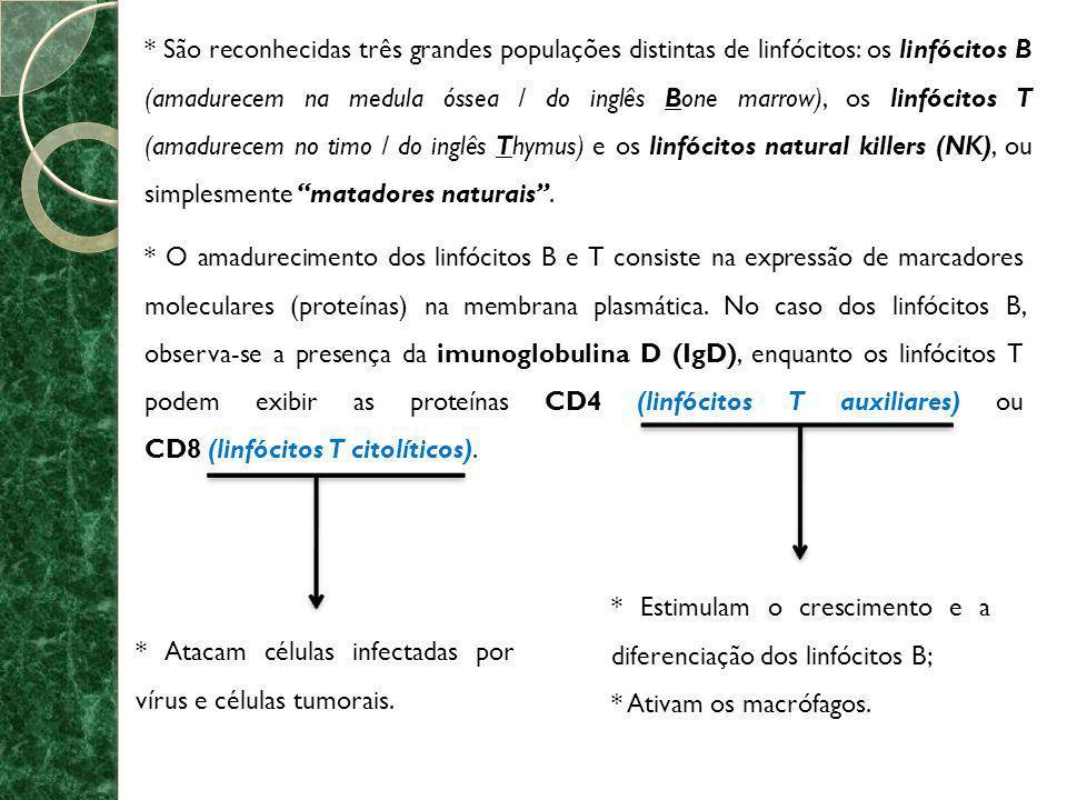 * Os linfócitos natural killers (NK), durante o processo de amadurecimento, NÃO expressam nenhum tipo de marcador de superfície comumente encontrado nos linfócitos T e B.