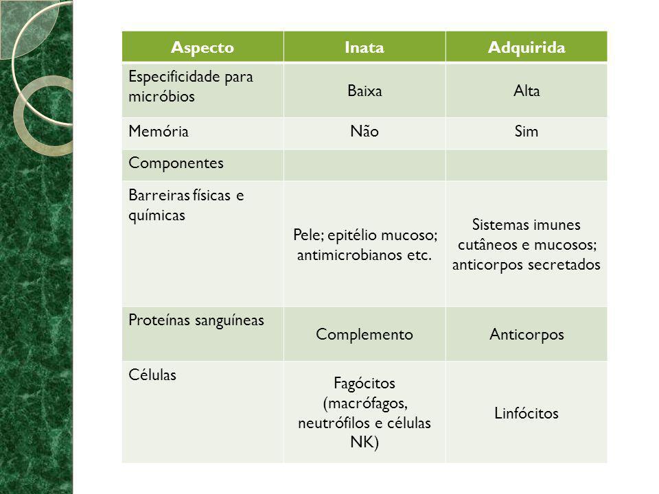 TIPOS DE IMUNIDADE ESPECÍFICA * As respostas imunes específicas são desencadeadas quando um indivíduo é exposto a um determinado agente estranho, disparando o alarme para o recrutamento de linfócitos e para a produção de anticorpos.