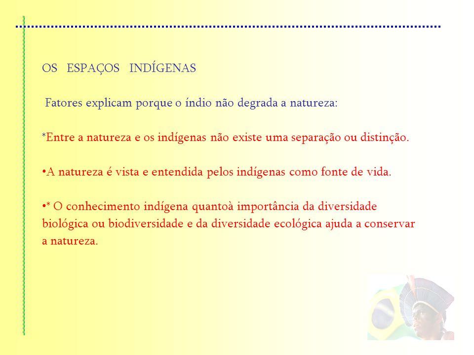 OS ESPAÇOS INDÍGENAS Fatores explicam porque o índio não degrada a natureza: *Entre a natureza e os indígenas não existe uma separação ou distinção. A