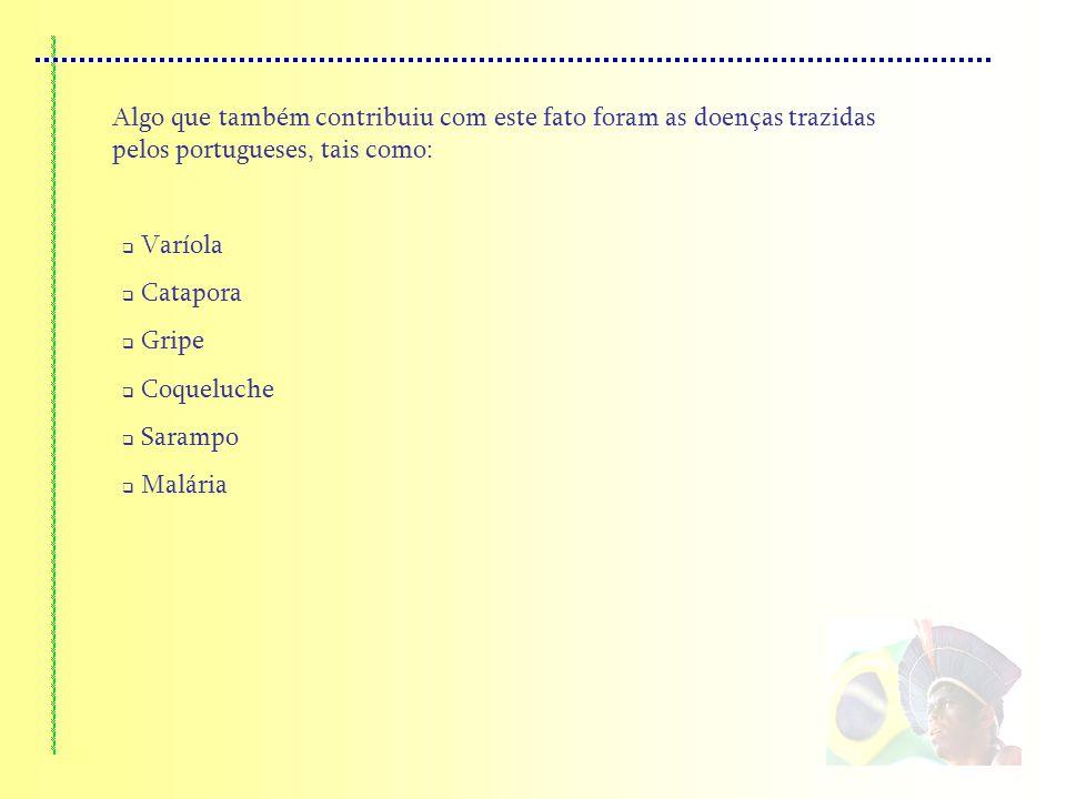 Algo que também contribuiu com este fato foram as doenças trazidas pelos portugueses, tais como: Varíola Catapora Gripe Coqueluche Sarampo Malária