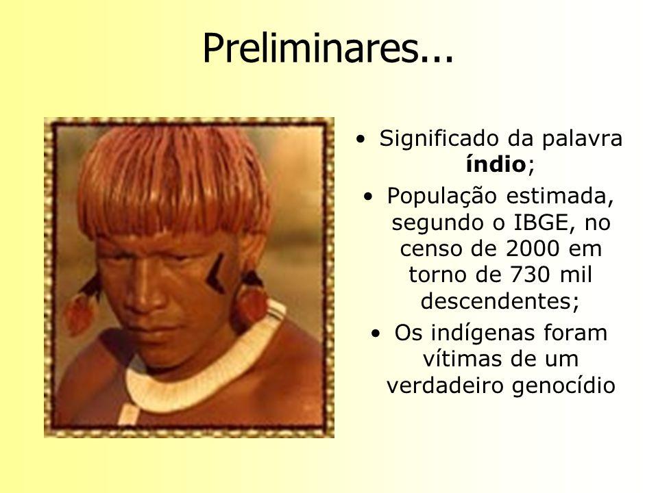 Preliminares... Significado da palavra índio; População estimada, segundo o IBGE, no censo de 2000 em torno de 730 mil descendentes; Os indígenas fora