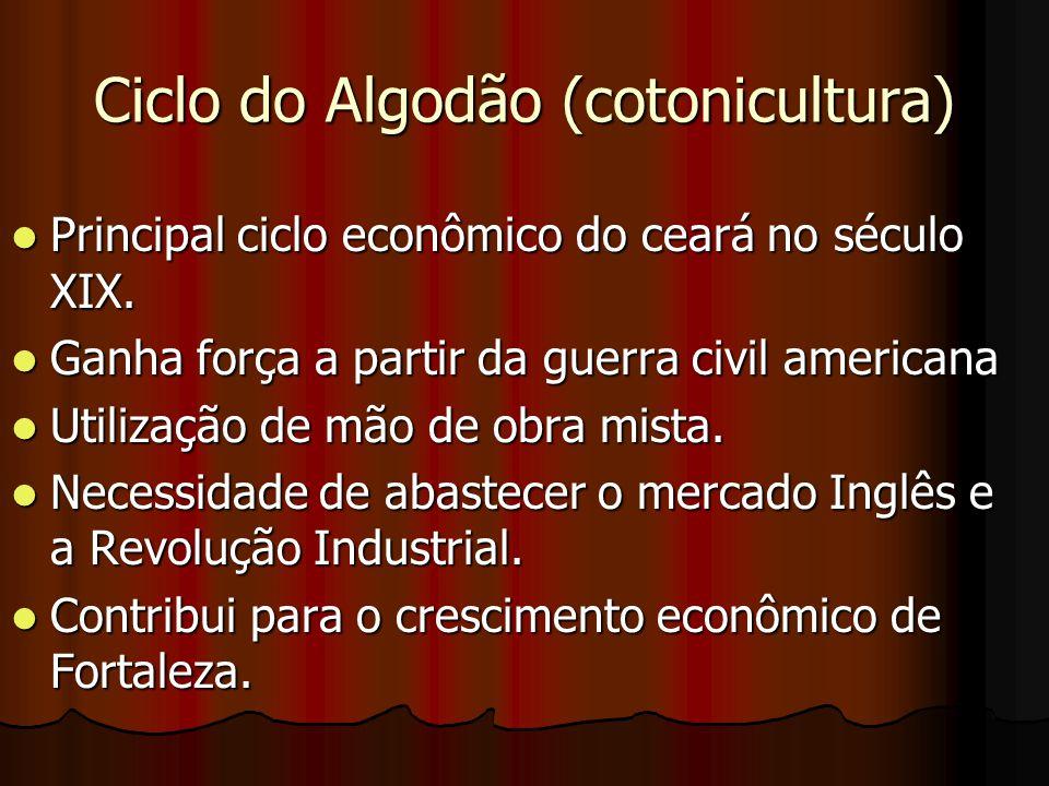 Ciclo do Algodão (cotonicultura) Principal ciclo econômico do ceará no século XIX.
