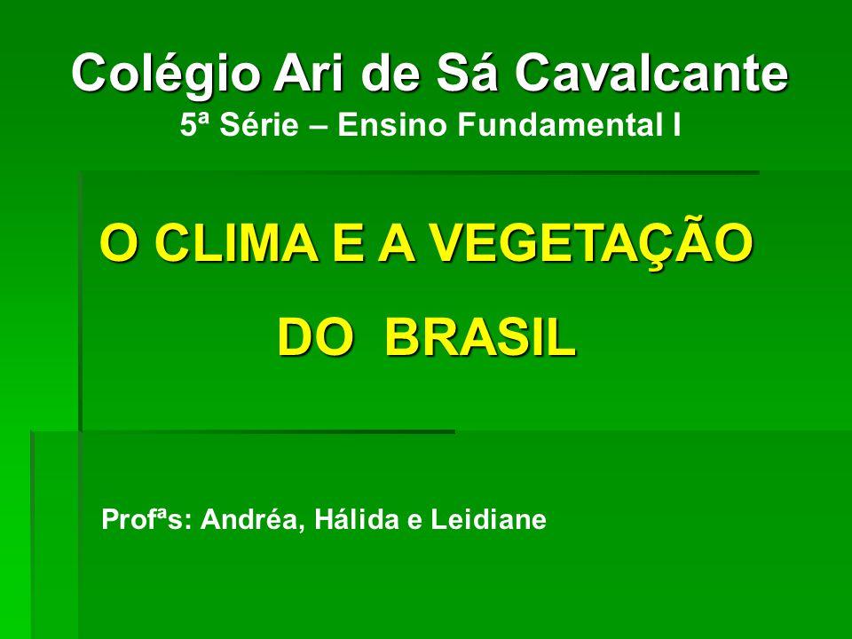 Colégio Ari de Sá Cavalcante 5ª Série – Ensino Fundamental I O CLIMA E A VEGETAÇÃO DO BRASIL Profªs: Andréa, Hálida e Leidiane