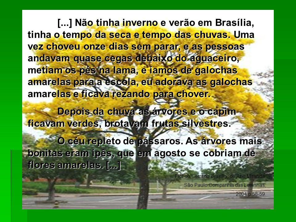 [...] Não tinha inverno e verão em Brasília, tinha o tempo da seca e tempo das chuvas. Uma vez choveu onze dias sem parar, e as pessoas andavam quase