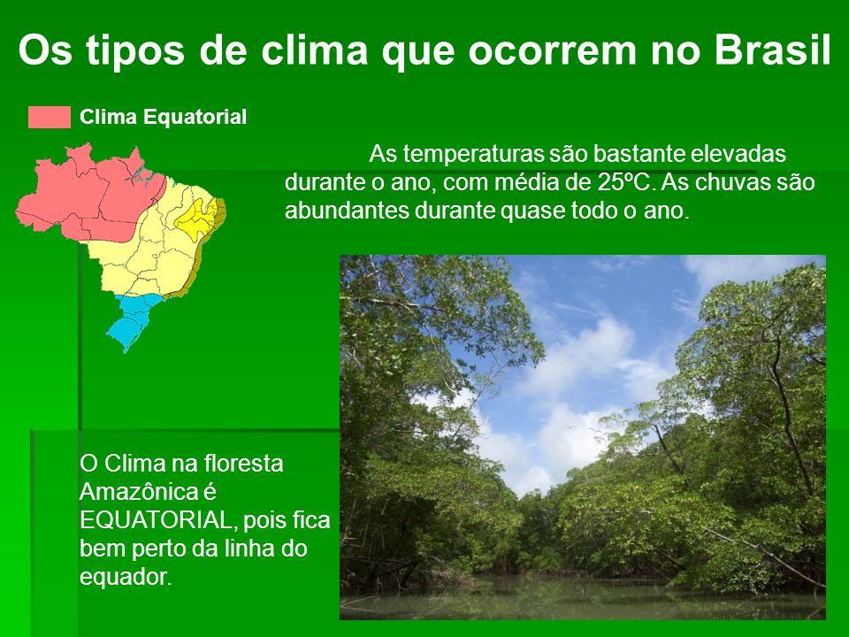 Os tipos de clima que ocorrem no Brasil Clima Tropical Típico As temperaturas são elevadas durante o ano, com média de 22ºC.