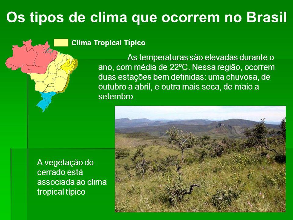 Os tipos de clima que ocorrem no Brasil Clima Tropical Típico As temperaturas são elevadas durante o ano, com média de 22ºC. Nessa região, ocorrem dua