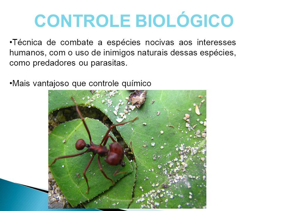 CONTROLE BIOLÓGICO Técnica de combate a espécies nocivas aos interesses humanos, com o uso de inimigos naturais dessas espécies, como predadores ou pa