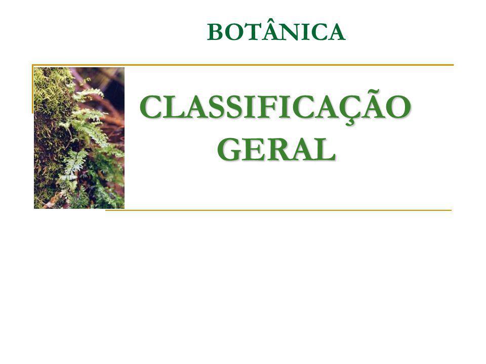 CLASSIFICAÇÃO GERAL BOTÂNICA CLASSIFICAÇÃO GERAL