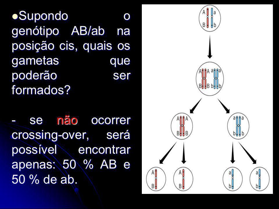 Supondo o genótipo AB/ab na posição cis, quais os gametas que poderão ser formados? Supondo o genótipo AB/ab na posição cis, quais os gametas que pode