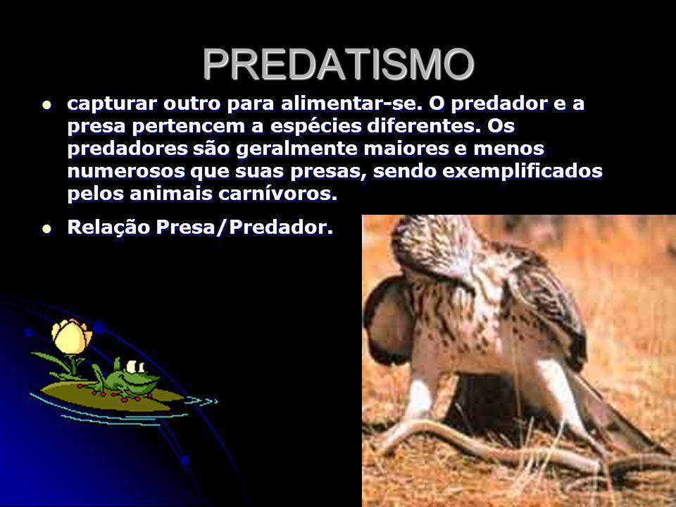 PREDATISMO capturar outro para alimentar-se.O predador e a presa pertencem a espécies diferentes.