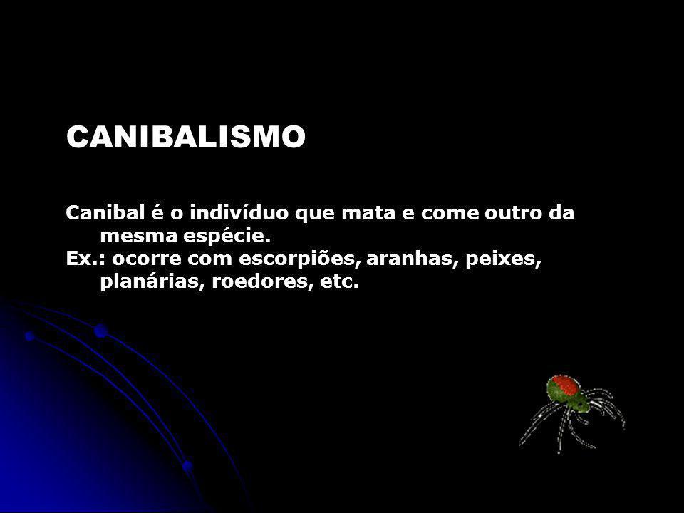 CANIBALISMO Canibal é o indivíduo que mata e come outro da mesma espécie.